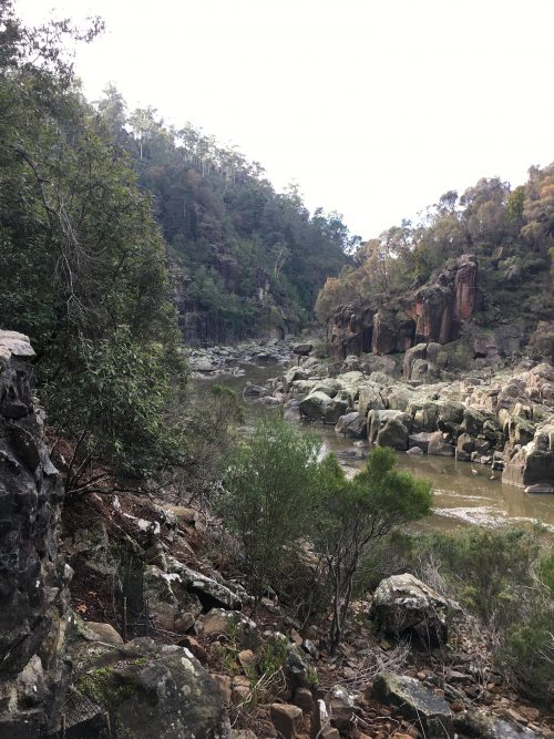 Phoe Travels to Cataract Gorge, Launceston