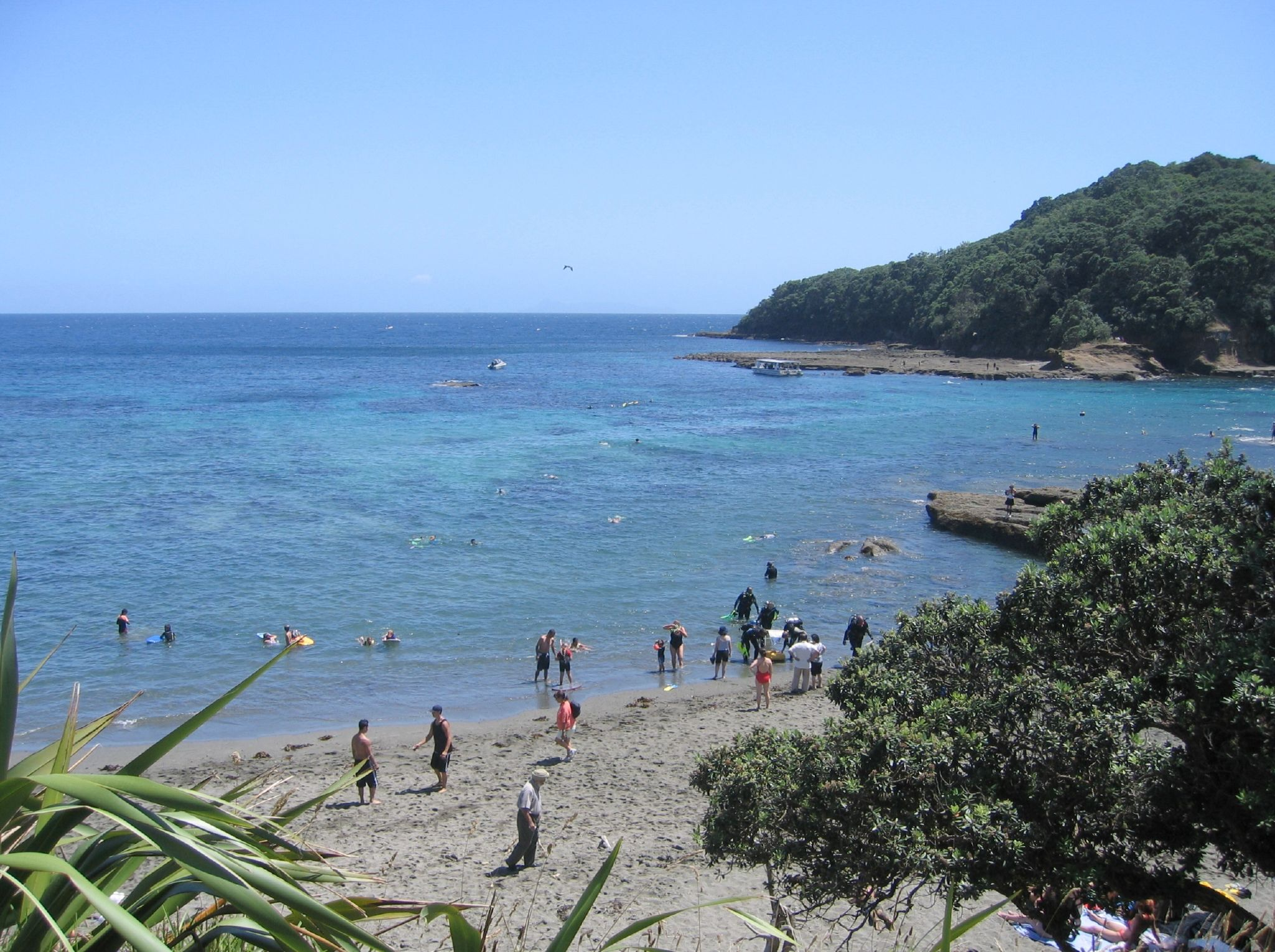 Phoe Travels to Goat Island in the North Island of New Zealand for Snorkelling